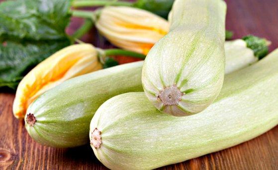 Сажаем и выращиваем полезные кабачки