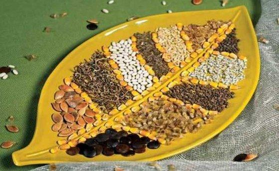 Как правильно хранить семена овощей?