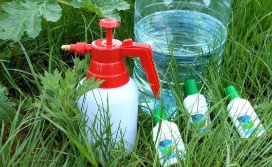 Борьба с сорняками: на что обратить внимание при выборе гербицидов?