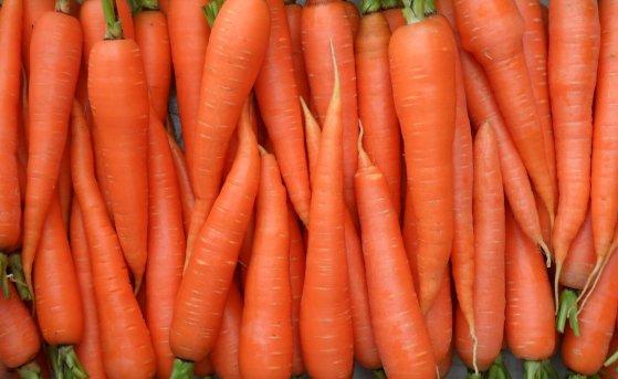 Трескается морковь: ищем погрешности в агротехнике!