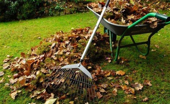 Что нужно сделать огороднику до наступления морозов?